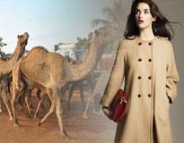 camel coat _205