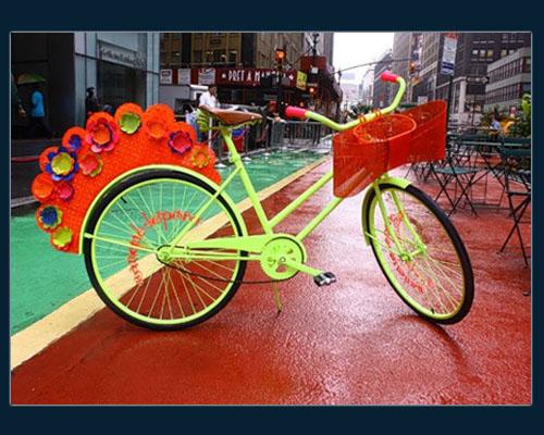 Nanette Bike