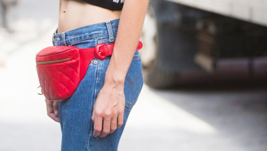 Fanny pack cover